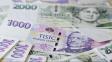 Kvůli pandemii loni stoupl počet i hodnota bankovek a mincí v oběhu