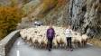 Škola pro pastýřky chce nastolit rovnoprávnost na španělském venkově