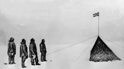 Amundsenovi pomohly v dobytí jižního pólu syrové steaky z tučňáků