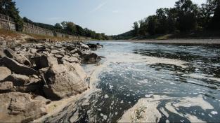 Jedovaté látky do řeky Bečvy unikly loni 20. září, podle odborníků poškodily celý vodní biotop a podmínky pro všechny na vodu vázané organismy asi na 40 kilometrech toku. Do kafilerie odvezli rybáři přes 40 tun ryb
