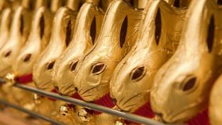 Čokoládoví zajíčci Lindt