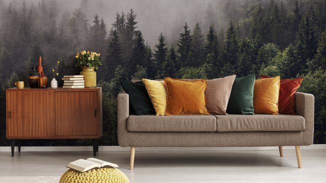 Fototapeta s lesem v mlze v obžvac°m pokoji
