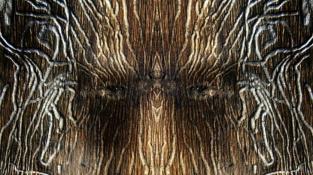 Kuk! Příroda umí vykreslit tváře i tam, kde je nečekáte