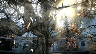 Warface - E3 2012 trailer