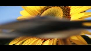 Mass Effect 3 - Take Earth Back trailer (finální verze)