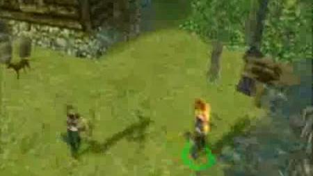 Dungeon Siege multiplayer