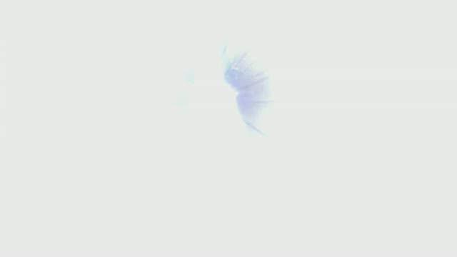 Dawn of War 2 eldar trailer
