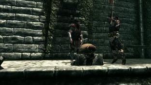 The Elder Scrolls V: Skyrim - svět Skyrimu a jeho postavy