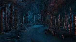 Dear Esther - caves video