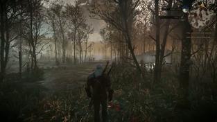 Zaklínač 3: Divoký hon - E3 a GC Demo