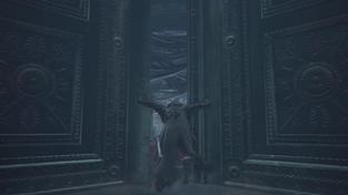 Dark Souls III Ashes of Ariandel PvP Aréna