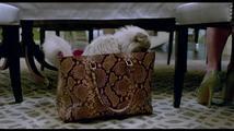 Já, kocour: ukázka kočičí pomsta - Haló,  jsem zlý kocour
