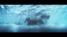 Putování tučňáků: Volání oceánu: Trailer
