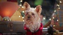 Pup Star: Better 2Gether: Trailer