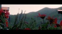 Tři billboardy kousek za Ebbingem: Mezinárodní trailer