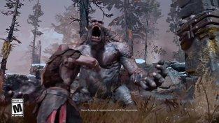 God of War - Limited Edition God of War Bundle | PS4 Pro