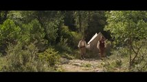 The Sisters Brothers: Trailer