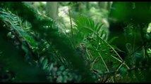 Beze stop (2018): Trailer 2