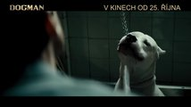 Dogman (2018) : TV spot