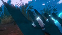 Among Ripples: Shallow Waters - Life of Pike Trailer