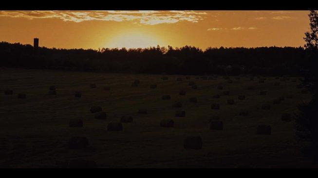 Survive the Night: trailer