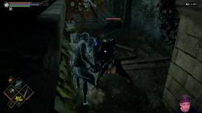 LongPlay - Demon's Souls Remake E06 - Strach a hnus v bažinách